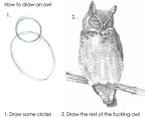 How to draw an owl. Step 1: Draw some circles. Step 2: Draw the rest of the fucking owl.